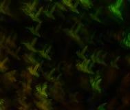 Mooie achtergrond met verschillende gekleurde zoemende vogel, abstra Royalty-vrije Stock Afbeeldingen
