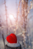 Mooie achtergrond Valentine Day Royalty-vrije Stock Foto
