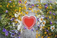 Mooie achtergrond van bloemengebied van madeliefjes en klokken en harten voor de Dag van Valentine ` s De ruimte van het exemplaa Royalty-vrije Stock Afbeeldingen