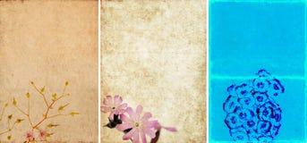 Mooie achtergronden Stock Fotografie