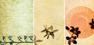 Mooie achtergronden Royalty-vrije Stock Afbeeldingen