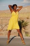 Mooie Afrikaanse Amerikaanse vrouw. royalty-vrije stock afbeeldingen