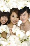 Mooie Aziatische vrouw drie Royalty-vrije Stock Afbeelding