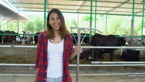 Mooie Aziatische vrouw of landbouwer met en koeien in koeiestal bij zuivel landbouwbedrijf-bewerkt, en veeteeltconcept stock video