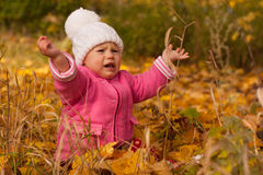 Mooie baby in de herfst Stock Afbeeldingen