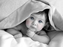 Mooie baby onder deken stock foto