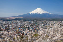 Mooie Berg Fuji en de bloesem van de sakurakers in de lente van Japan Stock Fotografie
