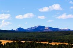Mooie Bergen en de bossen van het Yellowstone de Nationale Park royalty-vrije stock fotografie