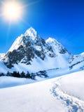 Mooie bergpiek in Nepal Stock Fotografie