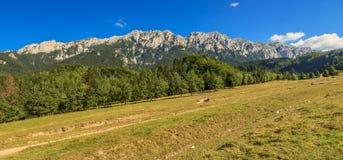 Mooie bergranden en prachtig panorama, de bergen van Piatra Craiului, de Karpaten, Roemenië Royalty-vrije Stock Foto