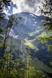 Mooie bergvallei Stock Foto's
