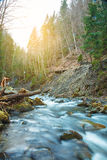 Mooie bergwaterval Huk in de Karpaten Royalty-vrije Stock Foto
