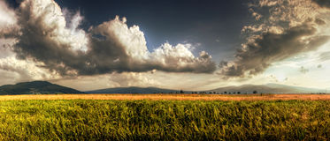 Mooie bewolkte hemel op het gebied stock fotografie