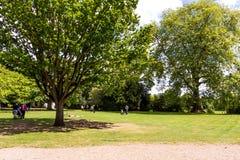 Mooie blauwe de zomerhemel met witte wolken over groene bomen Royalty-vrije Stock Fotografie