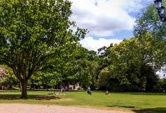 Mooie blauwe de zomerhemel met witte wolken over groene bomen Royalty-vrije Stock Foto