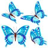 Mooie blauwe die vlinders, op een wit worden geïsoleerd Stock Afbeeldingen