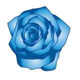 Mooie Blauwe Rose Vector Colour royalty-vrije illustratie