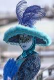 Mooie Blauwe Vermomming Stock Afbeelding