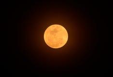 Mooie bloedige maan Stock Foto's