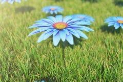 Mooie bloeiende blauwe bloem op een achtergrond van gras op een zonnige dag Gerberabloem of de bloem van Margarita Mooi royalty-vrije stock foto's