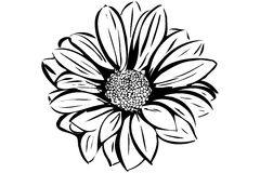 Mooie bloeiende bloemtuin Royalty-vrije Stock Foto's