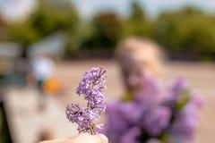 Mooie bloeiende lilac tak stock foto
