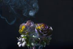 Mooie bloem in de rook royalty-vrije illustratie