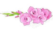 Mooie bloemachtergrond Stock Foto