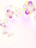 Mooie bloemen Stock Fotografie