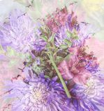 Mooie bloemen in aard Royalty-vrije Stock Fotografie