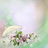 Mooie bloemen abstracte achtergrond Stock Foto