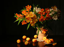 Mooie bloemen en abrikozen Royalty-vrije Stock Afbeeldingen