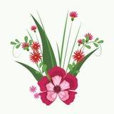 Mooie bloemen met bladeren Royalty-vrije Stock Afbeelding
