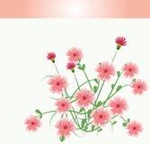Mooie bloemen met bladeren Royalty-vrije Stock Fotografie