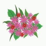 Mooie bloemen met bladeren Stock Fotografie