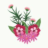 Mooie bloemen met bladeren Stock Afbeelding