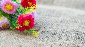Mooie bloemen op hennep Stock Foto's
