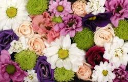 Mooie bloemenachtergrond royalty-vrije stock afbeelding
