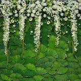 Mooie bloemenachtergrond voor huwelijk royalty-vrije stock afbeelding