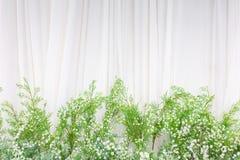 Mooie bloemenachtergrond voor huwelijksscène op achtergrond royalty-vrije stock foto