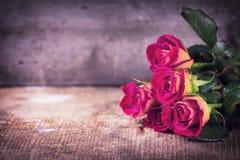 Mooie bloemenrozen Royalty-vrije Stock Foto