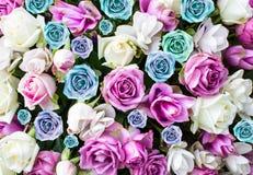 Mooie bloemenrozen Stock Afbeeldingen