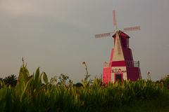 Mooie bloemtuin met roze winmill Stock Foto's