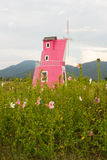Mooie bloemtuin met winmill Stock Afbeeldingen