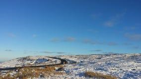 Mooie bluhemel en sneeuwklaver het dal stock fotografie