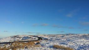 Mooie bluhemel en sneeuwklaver het dal royalty-vrije stock fotografie