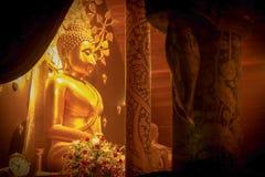 Mooie Boedha Stock Afbeeldingen