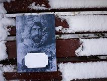 Mooie boekdekking Het boek is over onderzoekers van de Noord-zuid en het Noordenpolen stock afbeelding
