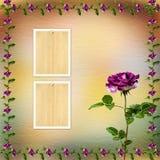 Mooie boeketten van rozen op pastelkleurachtergrond Royalty-vrije Stock Afbeeldingen