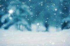 Mooie boom in de winterlandschap in recente avond royalty-vrije stock afbeeldingen
